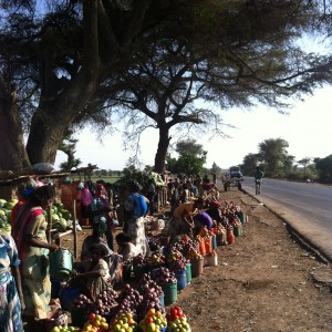Road side market selling fresh fruit and vegetables, Oromia, Ethiopia. Credit, Agriculture for Impact.