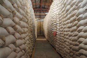 Grain warehouse, Jinga. Credit, Agriculture for Impact.