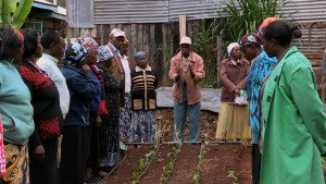 Training tea farmers in climate adaptation. Credit, ITC.