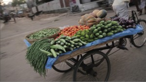 A farmer transports produce to the market. Credit, IFPRI.