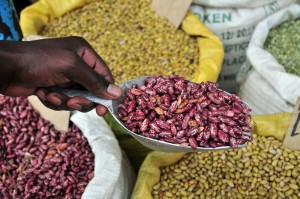 Bean market in Uganda. Credit Neil Palmer CIAT