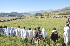 Field training for farmers in Tigray, Ethiopia. Credit USAID
