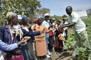 Training women farmers in Kenya. Credit, V. Atakos, CCAFS.