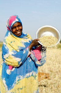 Woman sieving rice, Senegal. Credit, Engility Bruno Déméocq.