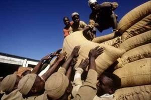 Warrantage system, Niger. Credit, FAO.